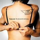 Discografía de Aerosmith: Young Lust: The Aerosmith Anthology