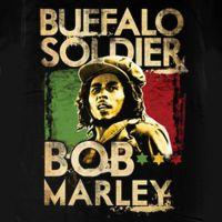 Canción  Buffalo Soldier de Bob Marley