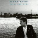 Discografía de Bryan Adams: Into the Fire