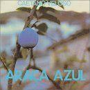 Discografía de Caetano Veloso: Araca Azul