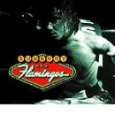 Enrique Bunbury: álbum Flamingos