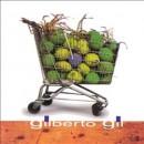 Discografía de Gilberto Gil: O Sol de Oslo