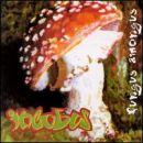 Incubus: álbum Fungus Amongus