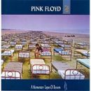 Discograf�a de Pink Floyd: A Momentary Lapse Of Reason