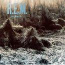 Discografía de R.E.M.: Murmur