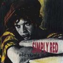 Simply Red: álbum Picture Book