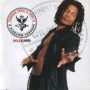 Discografía de Terence Trent D'Arby: Sananda Maitreya´s Wildcard