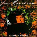 Discograf�a de Van Morrison: A Sense of Wonder